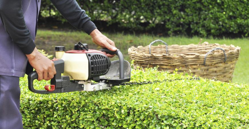 Vous recherchez une aide pour entretenir votre jardin ?